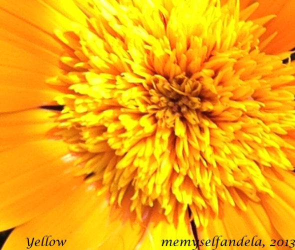 yellow copy