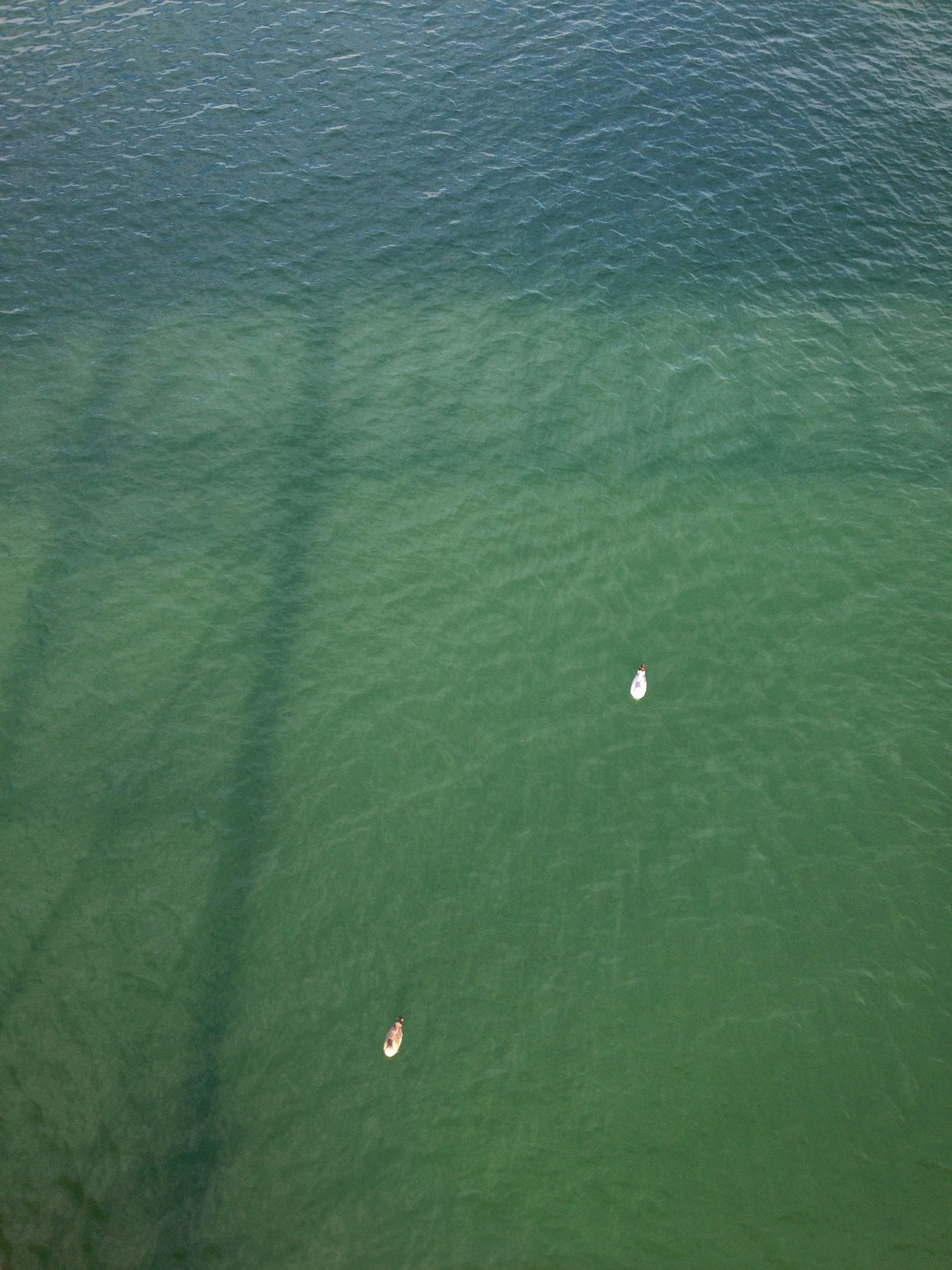 waves9